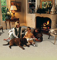 Carpeting Trend Carpet Amp Tile Inc Glendale Heights